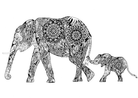 Elephant-Wall-Art-Prints