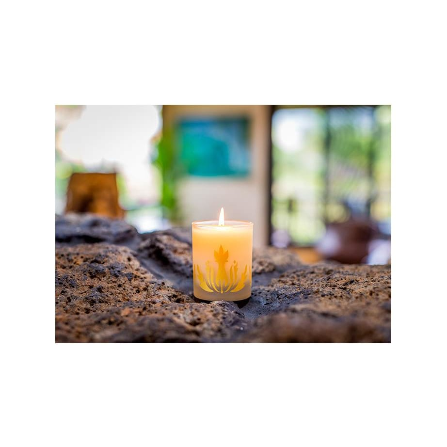 coconut vanilla soy candle - Home