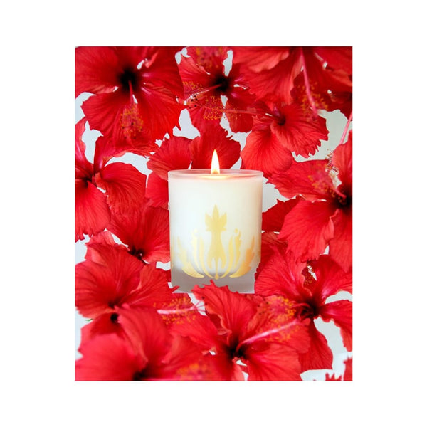 hibiscus soy candle - Home