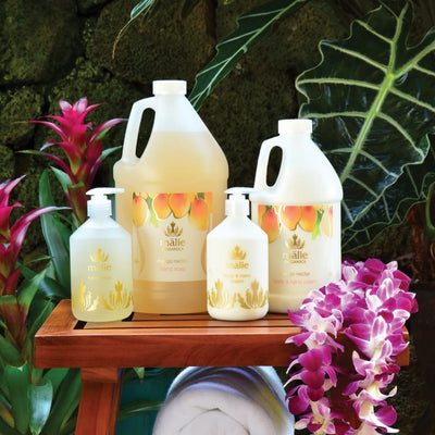 mango nectar eco-refill hand soap + body cream set - Eco-Refill