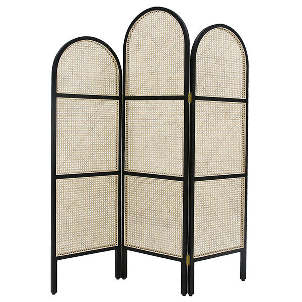 Webbing room divider black