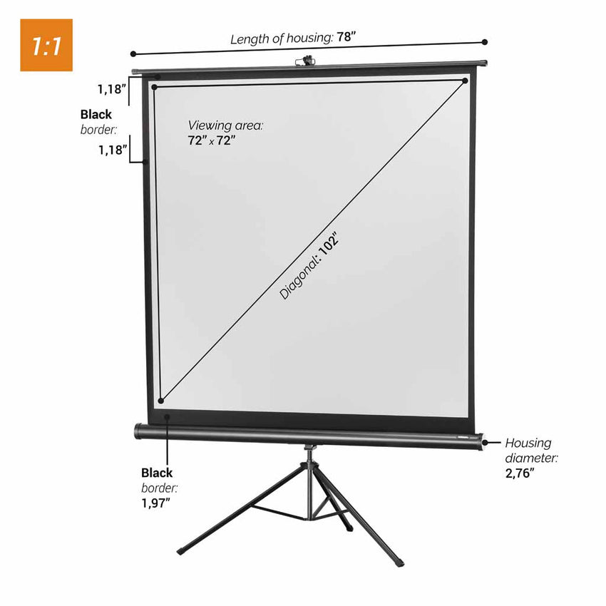 celexon projector screen Tripod Economy - Black Edition