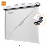 celexon Manual Expert pull down projector screen