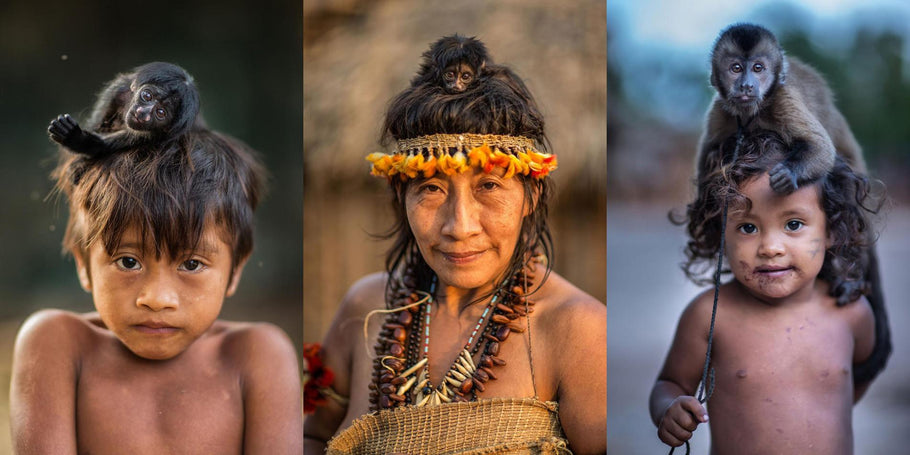 Indigenous lives and current threats to their existence and natural habitat