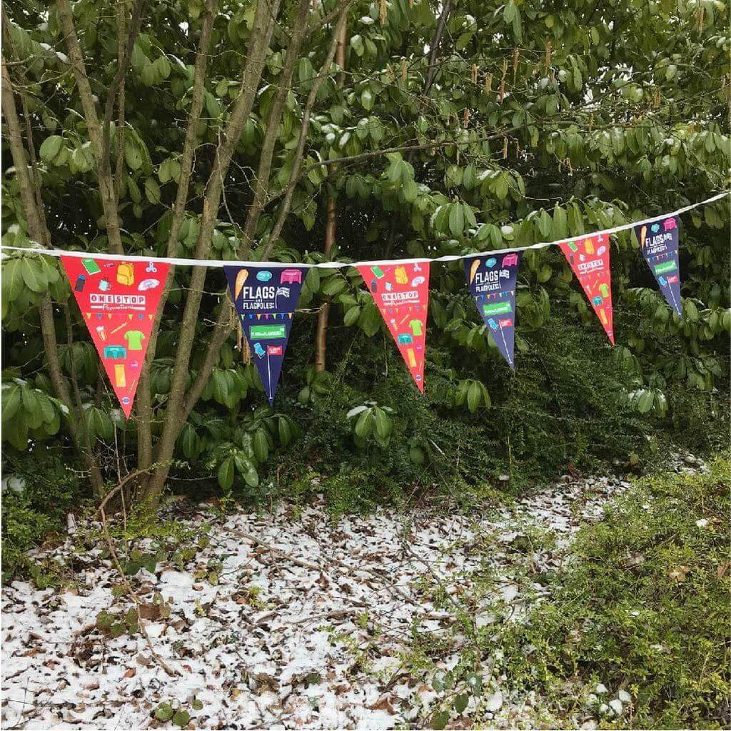 Snow problem for our bunting