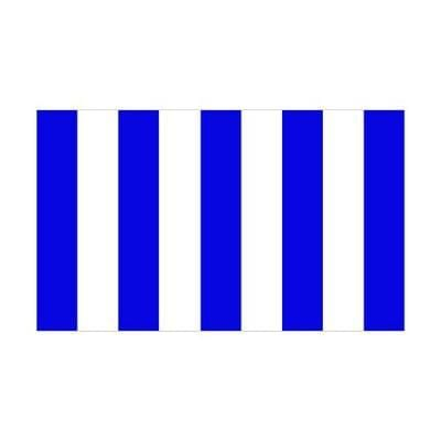 Blue & White Stripes 1.52m x 0.91m (5ftx 3ft) Budget Display Flag
