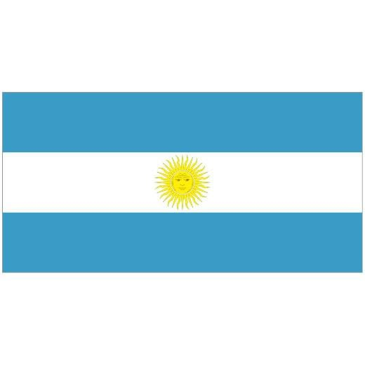 ARGENTINA 1.52m x 0.91m (5ftx 3ft) Budget Display Flag