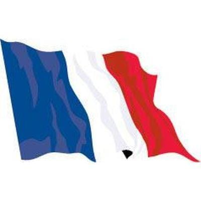 France 8ft x 5ft Budget Display Flag