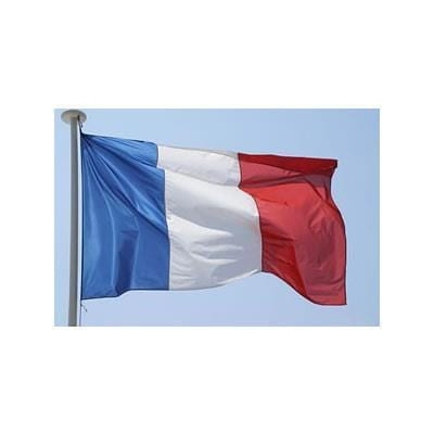 Printed France Flag 2.0yrd (183cm x 91cm)