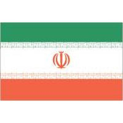 Iran 1.52m x 0.91m (5ftx 3ft) Budget Display Flag