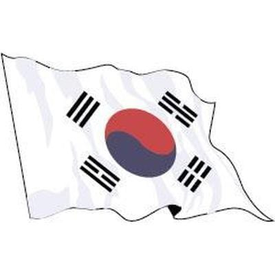 South Korea 1.52m x 0.91m (5ftx 3ft) Budget Display Flag