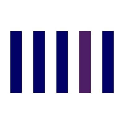 Navy & White Stripes 1.52m x 0.91m (5ftx 3ft) Budget Display Flag