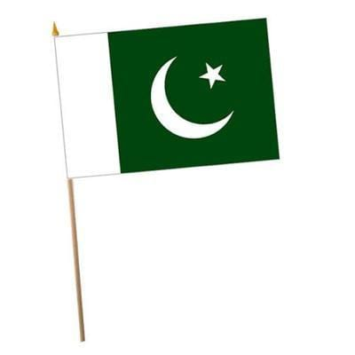 Pakistan Fabric Hand Waving Flags
