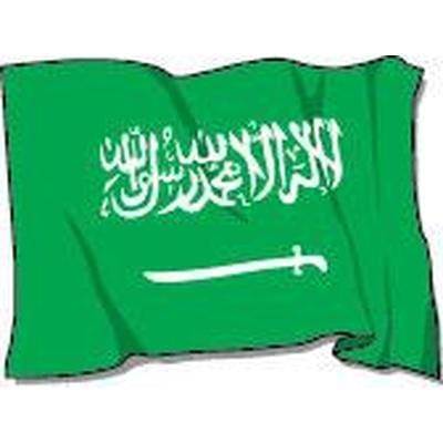Saudi Arabia 1.52m x 0.91m (5ftx 3ft) Budget Display Flag