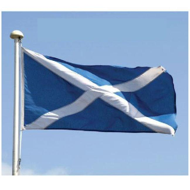St Andrews flag