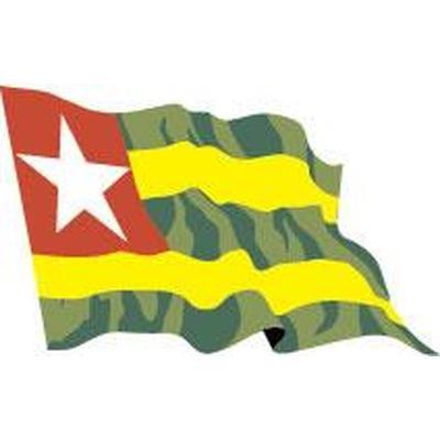 Togo 1.52m x 0.91m (5ftx 3ft) Budget Display Flag