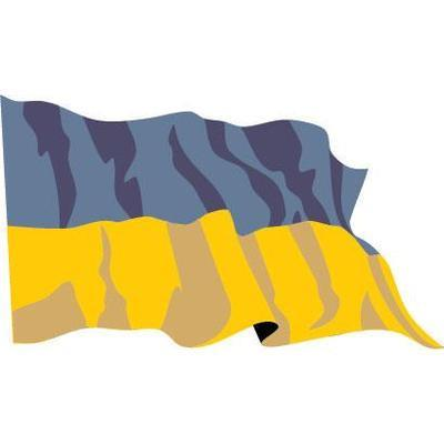 Ukraine 1.52m x 0.91m (5ftx 3ft) Budget Display Flag