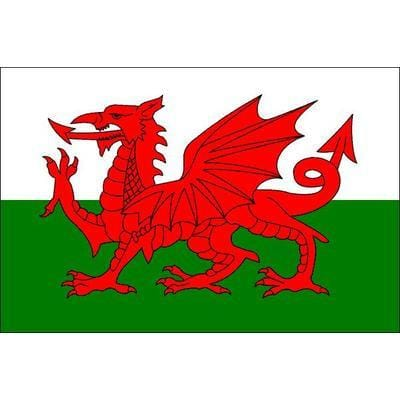 Wales Fabric Hand Waving Flags