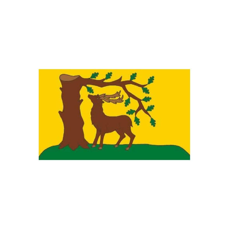 Berkshire county flag
