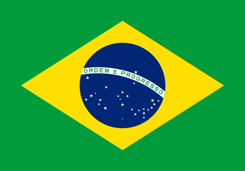 Brazil Sewn Flag with Rope & Toggle