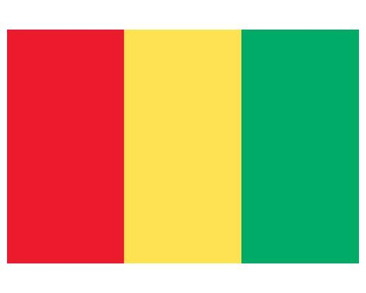 Guinea Budget Display Flag 152cm x 91cm (5ft x 3ft)