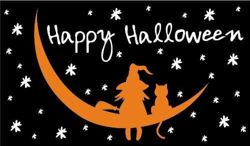Halloween Witch & Cat 5ft x 3ft Flag