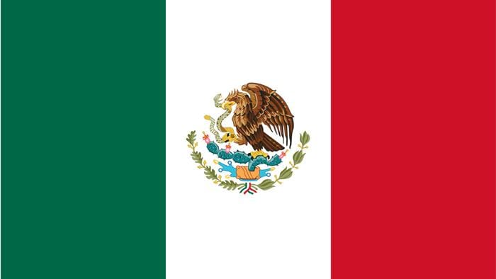 Mexico Flags & Bunting