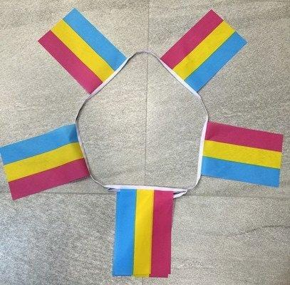 6m 20 flag Pansexual (Gay Pride) bunting
