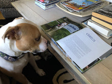 Signed Copy of Pit Bull Heroes: 49 Dogs with Resilience and Heart (U.S. Shipping Included)