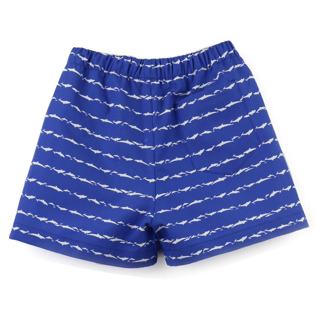 Printed poplin shorts | Royal blue and White | Dolphin