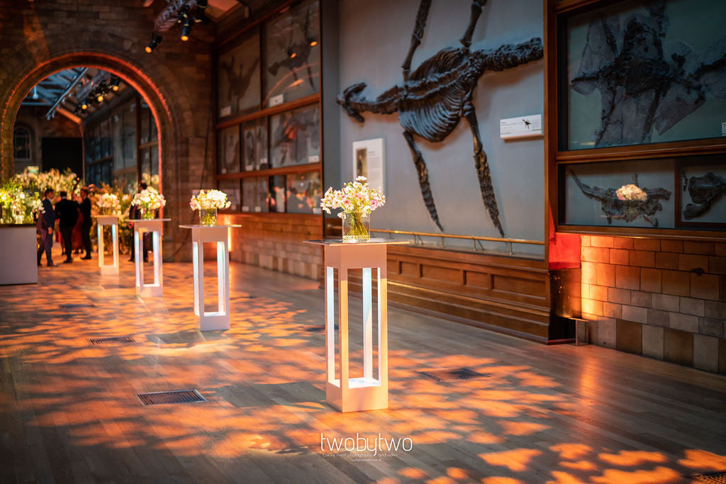 Floral Centerpiece Displays at The Natural History Museum | Spiral Snail Fossil White, Blue & Gold Self Adhesive Wax Seals | Heirloom Seals