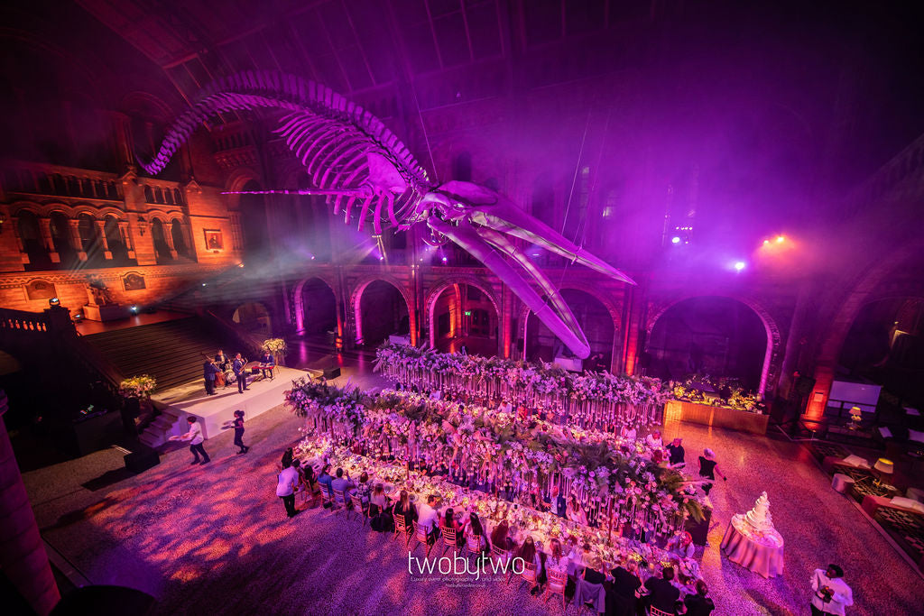 Say 'I do' at The Natural History Museum | Spiral Snail Fossil White, Blue & Gold Self Adhesive Wax Seals | Heirloom Seals
