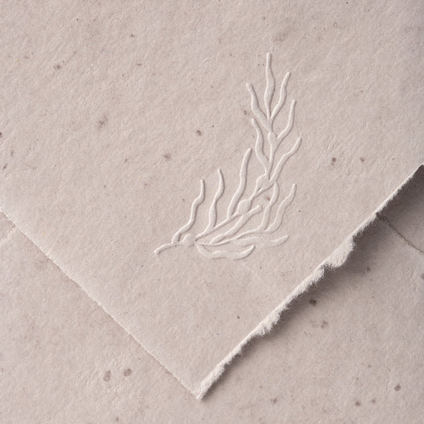 Rockweed Seaweed Botanical Embosser for Embossed Wedding Invitation Envelopes | Coastal Beach Wedding | Heirloom Seals
