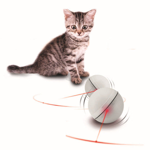 LED Pet Interactive Toy