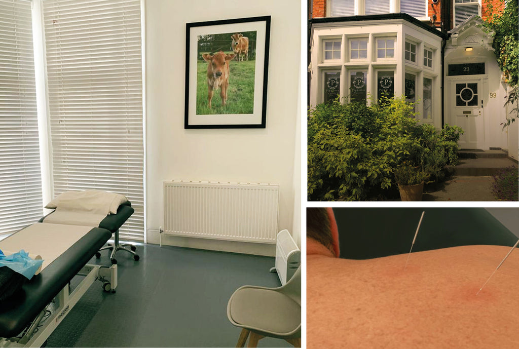 North London Muswell hill acupuncture clinic consultation room