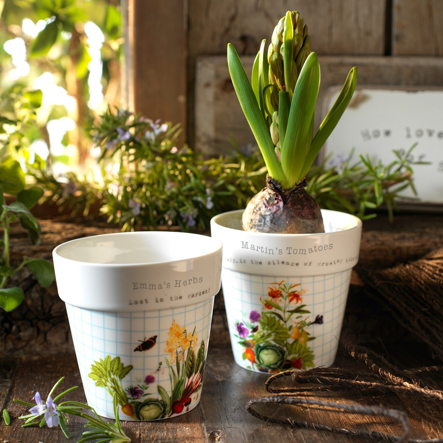 Official Royal Horticultural Society Planters