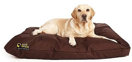 Dog Doza - Waterproof Cushion Beds - High Loft Fibre Filled Various Sizes Brown, Dog Beds by Low Cost Gifts
