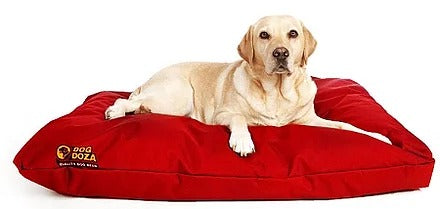 Dog Doza - Waterproof Cushion Beds - High Loft Fibre Filled Various Sizes Red, Dog Beds by Low Cost Gifts