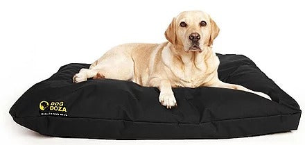 Dog Doza - Waterproof Cushion Beds - High Loft Fibre Filled Various Sizes Black, Dog Supplies by Low Cost Gifts