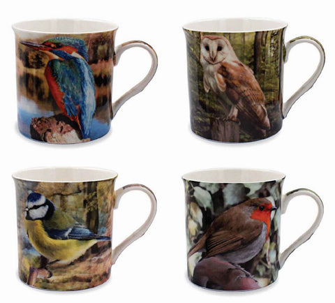 Set Of 4 Birds Mugs