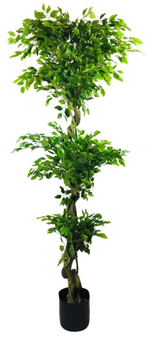 Artificial Ficus Leaf Topiary With Mini Leaves 175cm