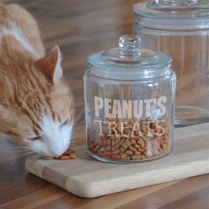 Personalised Cat Treat Jar