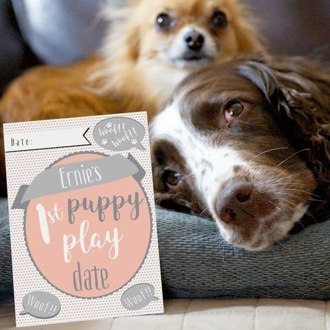 Buy Personalised Puppy Cards: For Milestone Moments