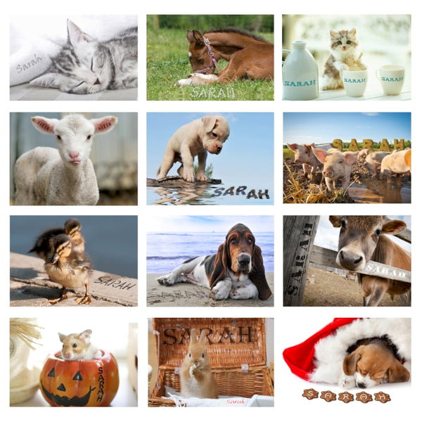 personalised-cute-animals-a4-wall-calendar