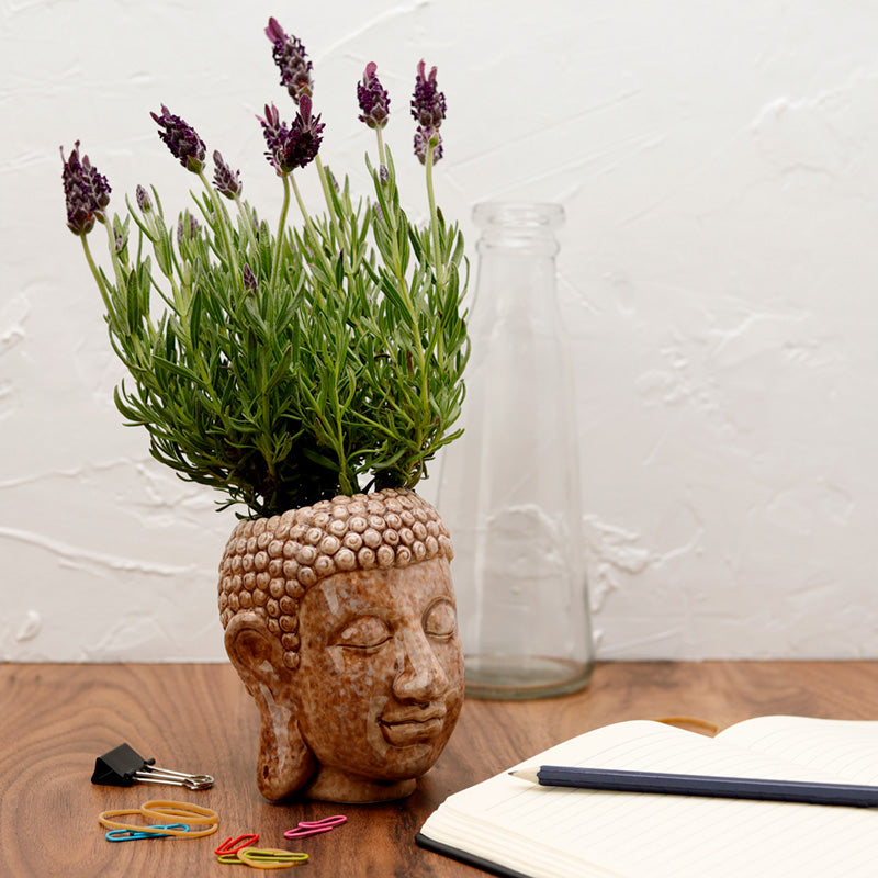 Decorative Ceramic Indoor Freestanding Planter - Thai Buddha, Lawn & Garden by Low Cost Gifts