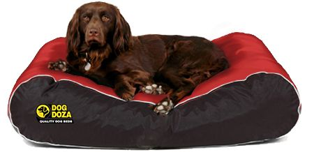 Dog Doza - Active Style Waterproof Box Border Beds Various Sizes Red/Black, Dog Beds by Low Cost Gifts