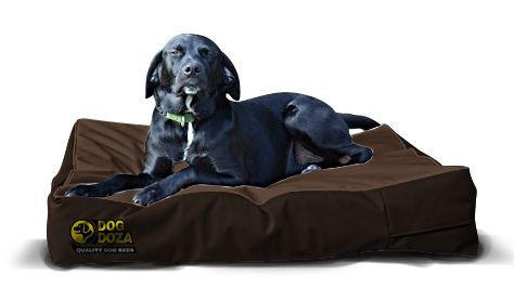 Dog Doza - Waterproof Mattress Beds - Various Sizes Brown, Dog Beds by Low Cost Gifts
