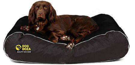 Dog Doza - Active Style Waterproof Box Border Beds Various Sizes Black, Dog Beds by Low Cost Gifts