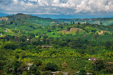 Landscape view of Colombia