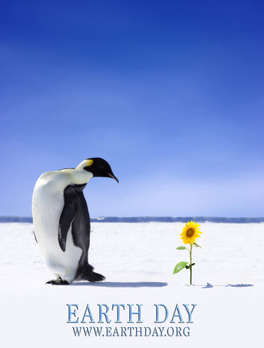 Earth Day Penguin Poster